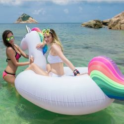 275cm 106 inch Giant Inflatable Unicorn Water Pool Floats White Pegasus Float Kids Swimming Ring Air Rafts Swim Flamingo